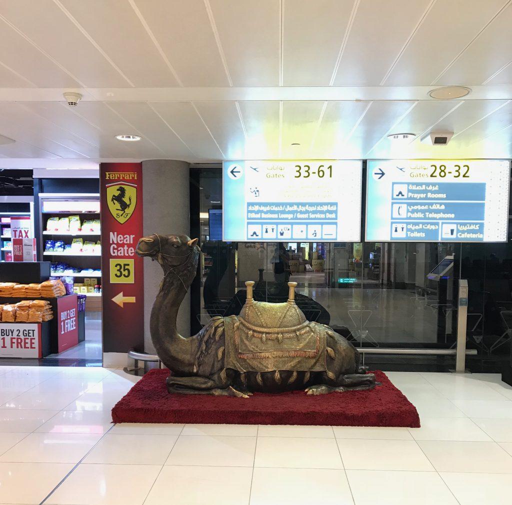 アブダビ空港のラクダ