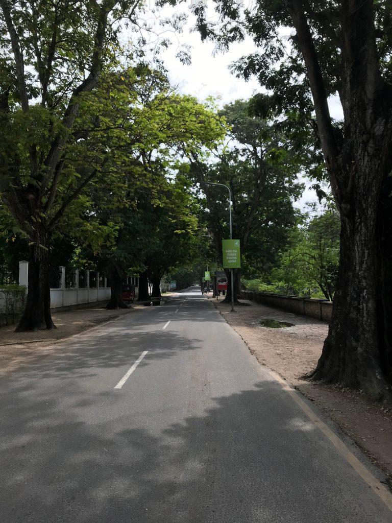 Kivukoniの道